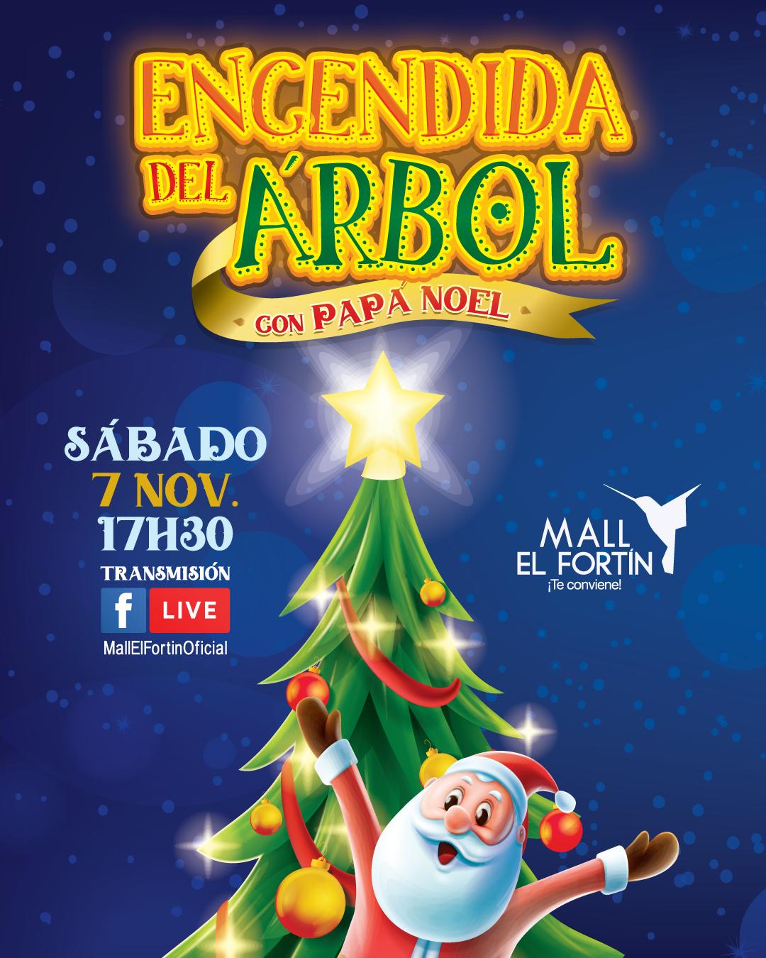 ENCENDIDA DEL ÁRBOL 07/11/2020